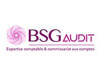 BSG Audit