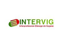 Intervig
